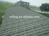 Placa del aluminio de la pintura del color del camuflaje de Hangzhou