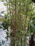 Bambù di bambù artificiale di uso esterno per la decorazione del giardino