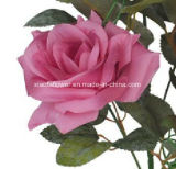 Única haste flor artificial/plástica/de seda de Rosa (XF30027)