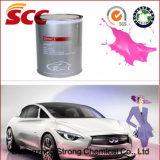 Ginis 1k, жидкостная краска автомобиля брызга покрытия 2k