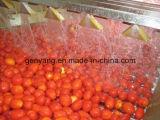 Voller automatischer Gemüsefruchtsaft, der Maschine herstellt