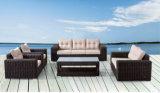 Aluの屋外の余暇の円形の藤のソファー