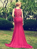 Bateau Neck Backless mangas compridas Prom