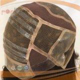 Parrucca superiore di seta di vendita superiore del merletto di Glueless dei capelli umani (PPG-l-0761)