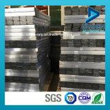 Inserto per il profilo di alluminio popolare della lega espulsione di Slatwall/del MDF con differenti formati