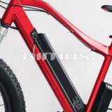 大きい力の脂肪質のタイヤ山の電気バイクの雪の電気自転車脂肪質山Eのバイク