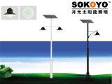 lumière solaire de jardin de 15W LED avec 3.5m Polonais