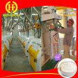 200t/24hはエチオピアの小麦粉の製造所を完了する