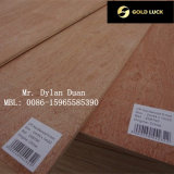 Sale를 위한 높은 Quality Bintangor Commercial Plywood