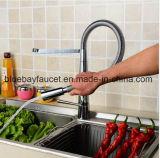 Les biens arrosent le long collet retirent le robinet de cuisine avec le bec d'émerillon