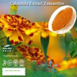 Extrait naturel de Calendula de 100% (5-20% Lutein/Zeaxanthin)