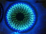 Striscia nera impermeabile flessibile LED di Digitahi 5V Ws2812b