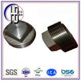 Fabrik stellen 304/316 Edelstahl-Verbindungsstück konisches W/M zur Verfügung