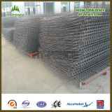 Heißes Dipped Galvanized/HDG Security Brc Fence/Roll Top Fence Panel für Brunei Market