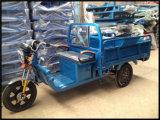 شحن درّاجة ثلاثية كهربائيّة كهربائيّة درّاجة ثلاثية شحن