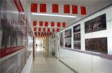 China-Baumwollsegeltuch-Förderband