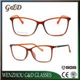Het nieuwe Optische Frame Van uitstekende kwaliteit T6010 van het Oogglas van Eyewear van de Glazen van het Ontwerp Tr90