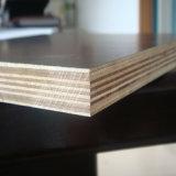 triplex van de Bekisting van 9*1220*2440mm het Mariene Concrete