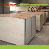Madera contrachapada comercial del pegamento 18m m de Garde Melamine/WBP de los muebles