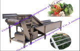 Machine végétale de lavage et d'écaillement de balai de la Chine d'acier inoxydable
