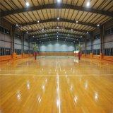 Campo de jogos do futebol da construção da construção de aço com grande espaço