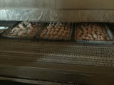 Traforo Type Quick Freezer per Fish Shrimp Dumplings Fish Fillet