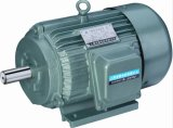 Three Phase AC Electric Motor (Y Series)