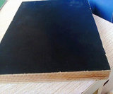 La película negra hizo frente al pegamento fenólico de la madera contrachapada
