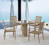 حديقة يثبت (كرسي تثبيت وطاولة) --[لن-1037]