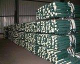 6.5FT 1.33lb 판매를 위한 녹색 그려진 장식용 목을 박은 T 담 포스트