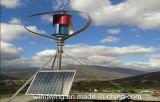 de Verticale Generator van de Wind 24V600W Maglev met Ce- Certificaat