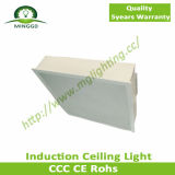 80W~100W Induction Panel Ceiling Light
