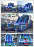 Inflatable engraçado Water e Dry Slide (MJE-149)