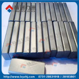 Buone punte di Solide del carburo di tungsteno di durezza STB