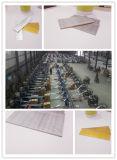 China-Brads Lieferant galvanisierter Stahlnagel-geläufiger Nagel T Nägel, t-Nägel