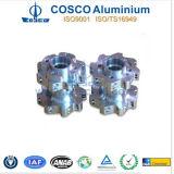 Cosco AluminumかAluminium Extrusion Machining Profile