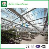 Glas/de Holle Aangemaakte Serre van het Aluminium van het Glas voor Landbouw/Commercieel
