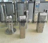 Hardware di vetro dello zipolo del quadrato della scala dell'acciaio inossidabile [specchio 316)