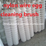 نيلون سلك بيضة تنظيف بكرة فرشاة ([ي-321])