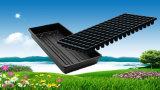 PS van de Cellen van de Levering van de Fabrikant van 540X280mm direct de Verschillende Zwarte Plastic Dienbladen van het Kinderdagverblijf voor de Zaailingen van de Installatie