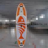 Panneau de vague déferlante gonflable de palette de modèle coloré d'Eva-Garniture de poissons