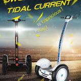 Электрическое цена самоката Chariot самокат собственной личности дешево 2 колес балансируя для сбывания