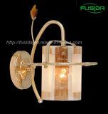 Éclairage pendant en verre de lampe de mur de clip (9371/1W)