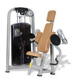 Máquina da onda do bíceps dos nomes do equipamento da ginástica