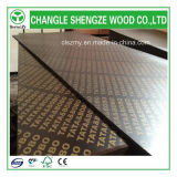 Produced professionnel Phenolic Glue 15mm Film Faced Plywood
