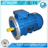 C&Uくまが付いているポンプのためのElectromotor氏