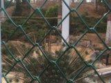Загородка звена цепи PVC прямой связи с розничной торговлей фабрики Coated/провод диаманта
