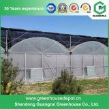 Invernadero agrícola tropical del bajo costo para la venta