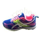 جديد يصل نساء حارّ نمو حذاء رياضة أحذية