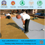 Membrane de imperméabilisation de PVC pour le toit avec l'altération superficielle par les agents atmosphériques à long terme